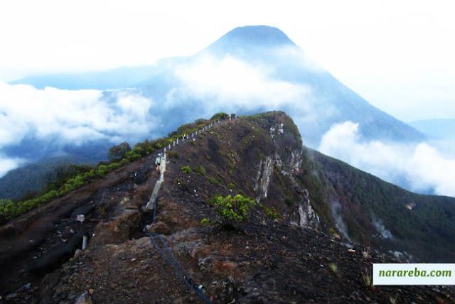 Jalur Pendakian Gunung Gede - Pangrango